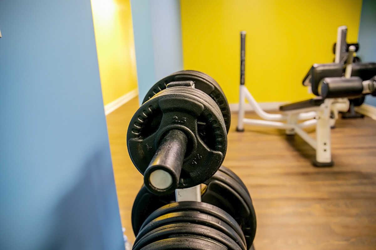 Weight Training at Elite Training Facility